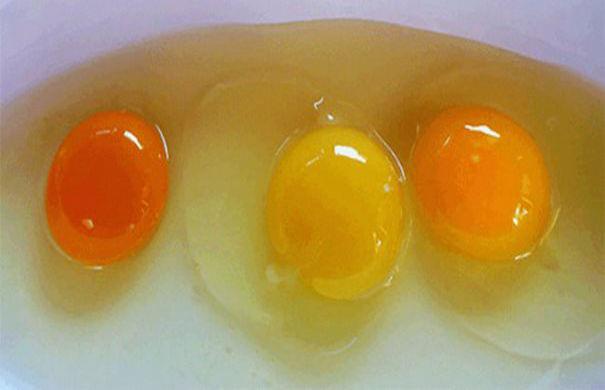 ΔΙΑΤΡΟΦΙΚΗ ΒΟΜΒΑ; ΠΡΟΣΟΧΗ με τα αυγά!